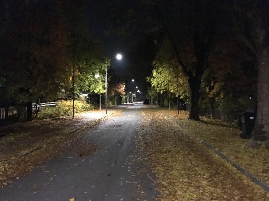 Gatlyktor, alléträd och höstlöv på en lätt dimmig nattgata i Älvsjö.